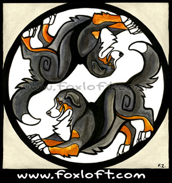 Yin Yang Dogs - Bernese Mountain Dogs - Playbow