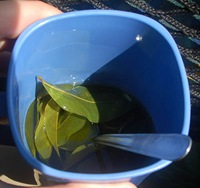 coca_tea