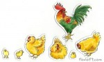 Chicken Family Magnets