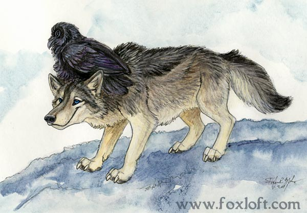 Wolf Feathers