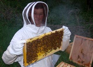 fox_beekeeping