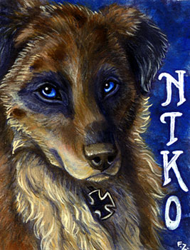 Niko Badge