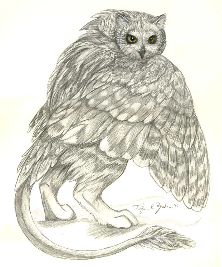 Owl Griffin