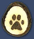 Cat Pawprint