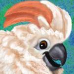 Cockatoo Icon