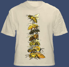 Bee Stack